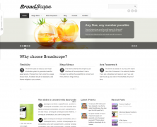 BroadScope